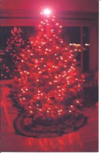 Red Xmas Tree